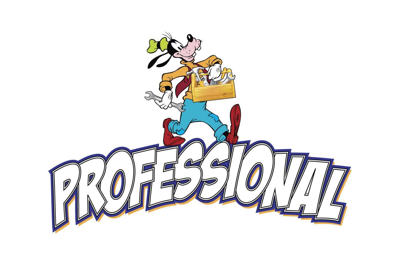 Šilja professional